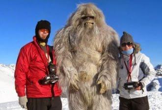 Существует ли снежный человек и как выглядит йети